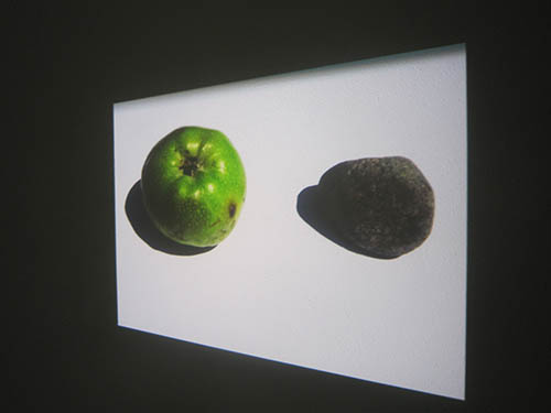 Sentier des Peintres, France, projection of an apple and a stone, by Jay Rechsteiner